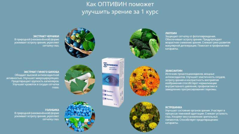 Состав средства сочетает растительные компоненты